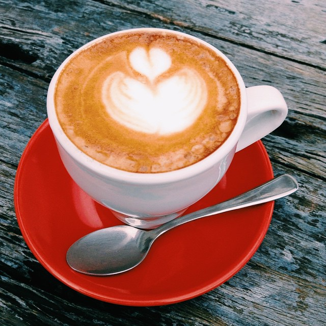 Magnum Opus Fine Coffees